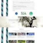 Tree Specialist - Tree climbing, abbattimento e potatura alberi Varese