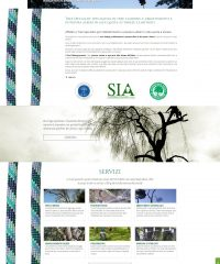 Tree Specialist – Tree climbing, abbattimento e potatura alberi Varese