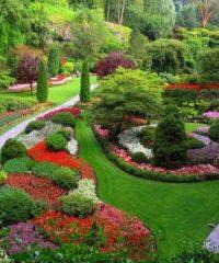 Bosio Francesco – Costruzione e manutenzione giardini Como