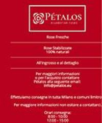 Pétalos – Rose ecuadoriane Milano